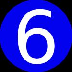 risk factor 6